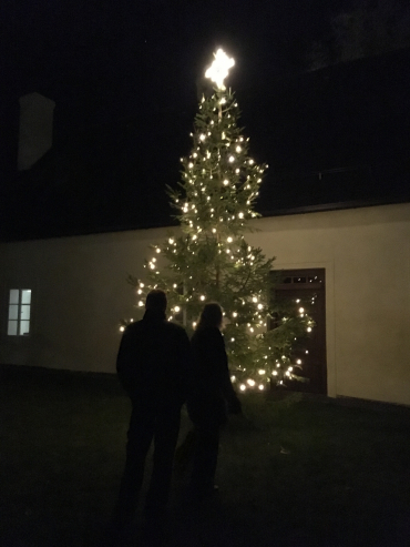 Rozsvícení stromku