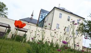 Zámek Svijany z jara